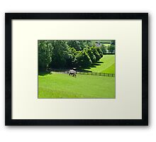 Horses grazing in Yorkshire Framed Print