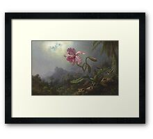 Martin Johnson Heade - Two Hummingbirds With An Orchid 1875. Garden landscape: garden view, trees and flowers, blossom,  lotus blossom, botanical park, orchid, wonderful flowers Framed Print