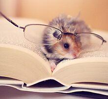Hamster The Reader II by LenkaOBS