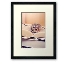 Hamster The Reader II Framed Print