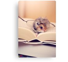 Hamster The Reader II Canvas Print
