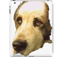 big sad dog iPad Case/Skin