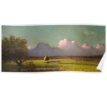 Martin Johnson Heade - Sunlight And Shadow The Newbury Marshesc 1871. Field landscape: field landscape, nature, village, garden, flowers, trees, sun, rustic, countryside, sky and clouds, summer Poster