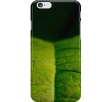Landing Strip iPhone Case/Skin
