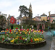 Flowers at Portmeirion by Funkylikeabee