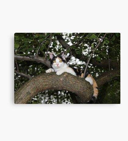 I Can Do Anything That My Big Brother Mishu Can Do Canvas Print
