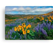 Central Washington Spring Canvas Print