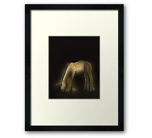 Golen Unicorn named Cefyll Framed Print