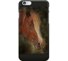 Worried about Chincoteague iPhone Case/Skin