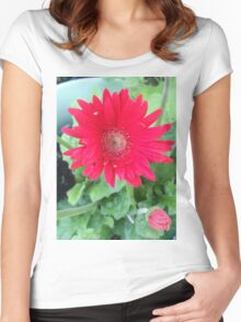 Daisy Flower Women's Fitted Scoop T-Shirt
