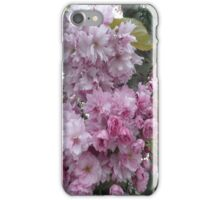 Blossom time iPhone Case/Skin