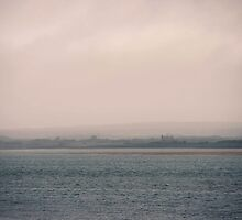 Fog Settling by Mary Ann Reilly