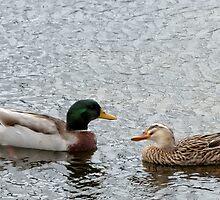 Duck Date by Jill Nightingale