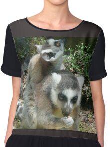 Mother & Baby Lemurs Chiffon Top