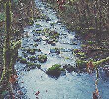 Woodland Stream by Eric Muhr