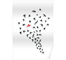 Unique bird Poster