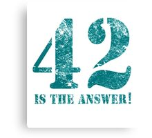 42 is the answer to everything Canvas Print