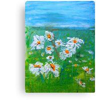 Meadow Daisies Canvas Print
