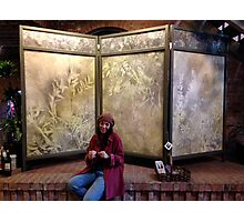 Art Screen in perfect location . . . . Photographic Print