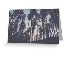 The Pines Greeting Card