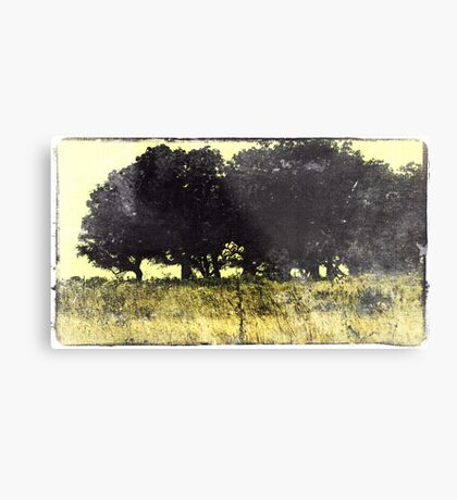 Crested Trees Metal Print
