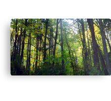 Wildwood Trail  Metal Print