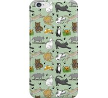 Day in the life of a Cat  iPhone Case/Skin