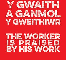 Proverb by Hywel Edwards