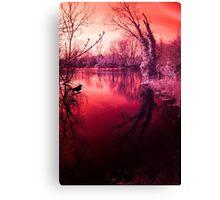 Spooky lake, mysterious light Canvas Print
