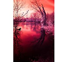 Spooky lake, mysterious light Photographic Print