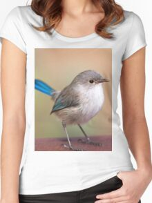 Splendid Fairy-Wren Women's Fitted Scoop T-Shirt