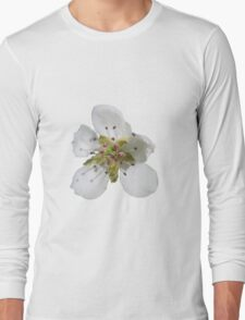 a peach blossom on buttercup background Long Sleeve T-Shirt