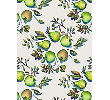 Summer's End - apples and pears Photographic Print