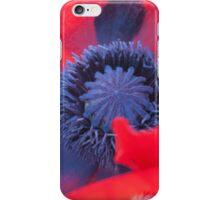 Poppy in bloom - Norfolk, UK iPhone Case/Skin