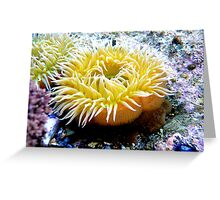 Life Under Water Greeting Card