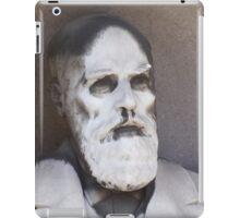 John Haswell iPad Case/Skin