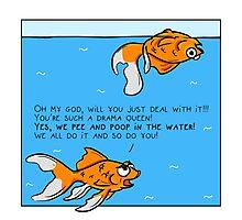 Clean Your Aquarium Photographic Print