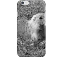 Black Tailed Prairie Dog iPhone Case/Skin
