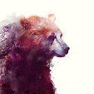 Bear // Calm - Square Format by Amy Hamilton