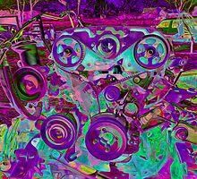 Wild Gears by Susan Nixon