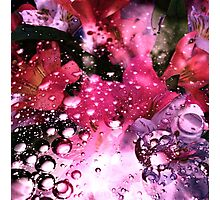 Flower and Oil Photographic Print