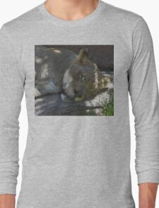 Sleeping Lioness in Stained Glass Long Sleeve T-Shirt