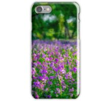 Lavender Grove iPhone Case/Skin