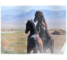 Pony Express-1 Poster