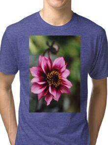 Dreamy Nights Tri-blend T-Shirt