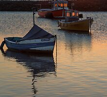 Tessside Shipping at Sunset by Trevor Shelley