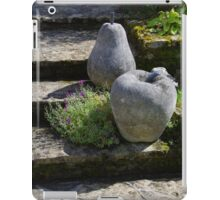 Up The Apples And Pears iPad Case/Skin