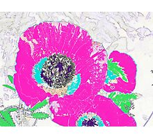 Punch of Pink Poppies I Photographic Print