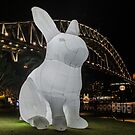 Sydney's Vivid Festival 2014: V by Adam Le Good