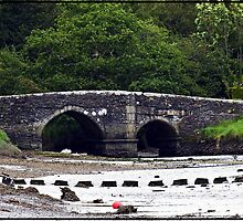 """"""" Lerryn's stepping stones at low tide"""" by Malcolm Chant"""